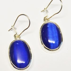 Blue Tigers eye earrings.